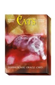 Karty z kotami